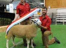 13W023 Princess Kate Supreme Prime Lamb Dam Sydney Royal 2014
